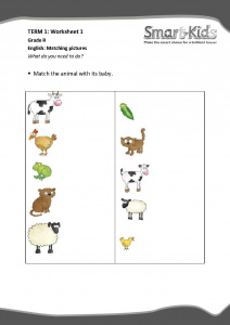Grade R: Matching pictures